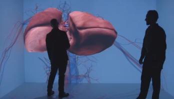 Living-heart-dassault-systemes-3dexperience-2014